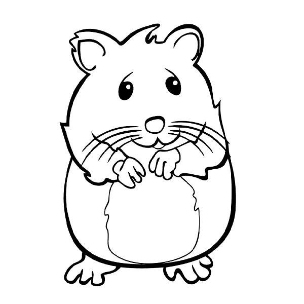 Cute Hamster Coloring PagesKidsfreecoloring.Net | Free Download ...
