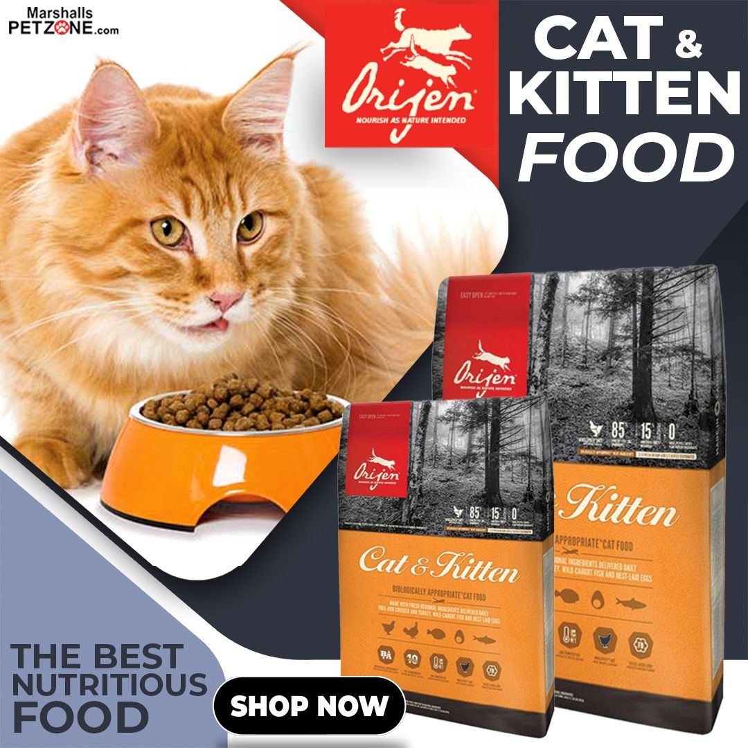 Orijen Cat Food The Best Nutritious Food In 2020 Kitten Food Dry Cat Food Best Cat Food