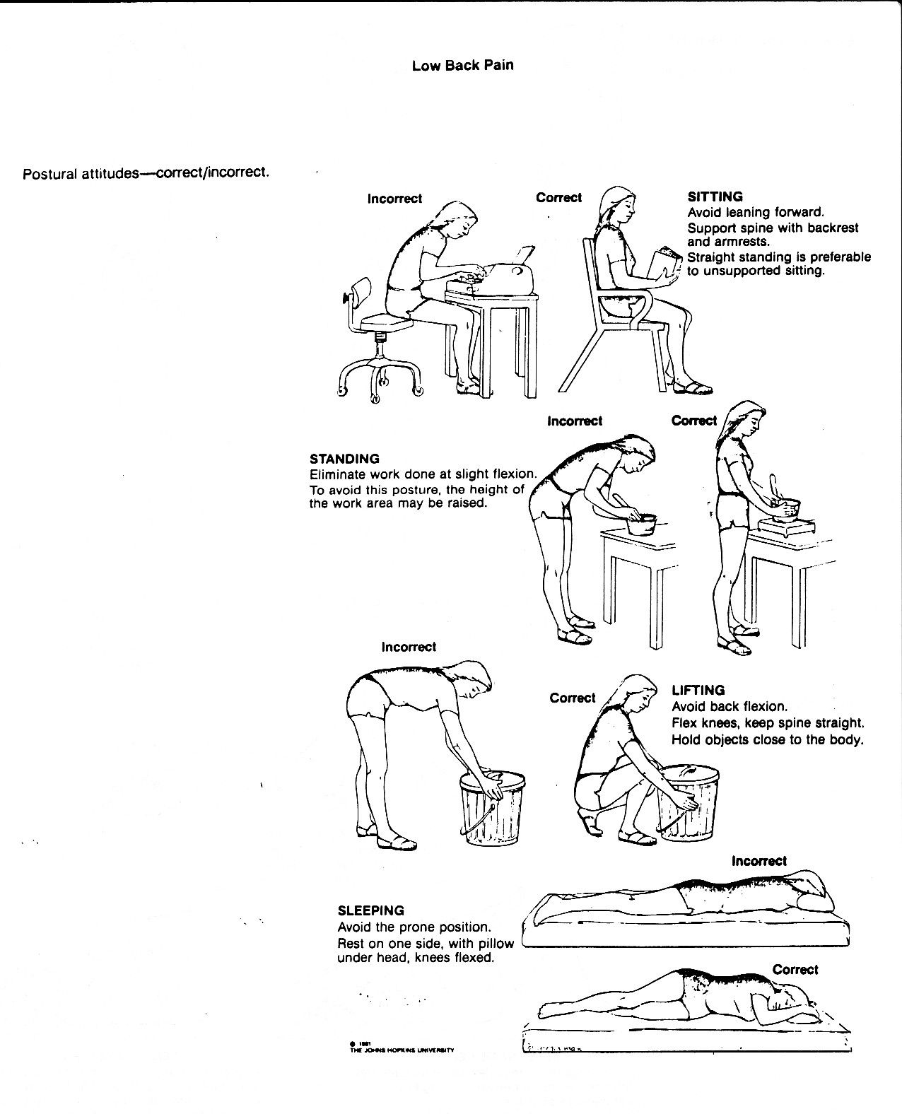 Lower back muscle pain exercises flexibility and posture lower back muscle pain exercises pooptronica