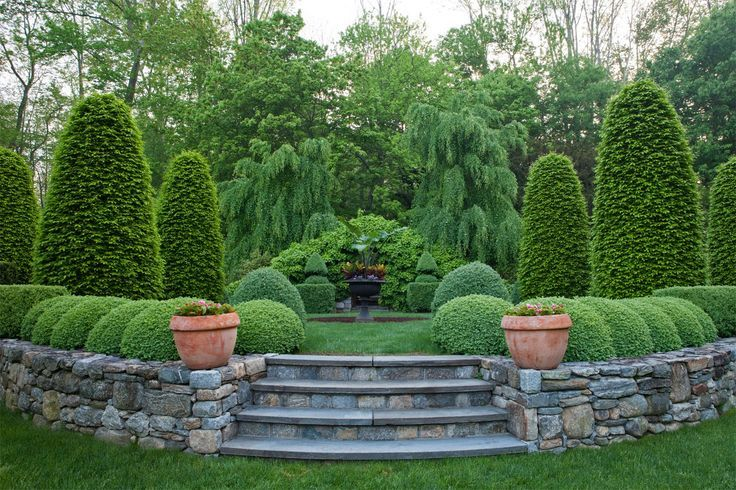 retaining walls and green giant evergreen borders Google
