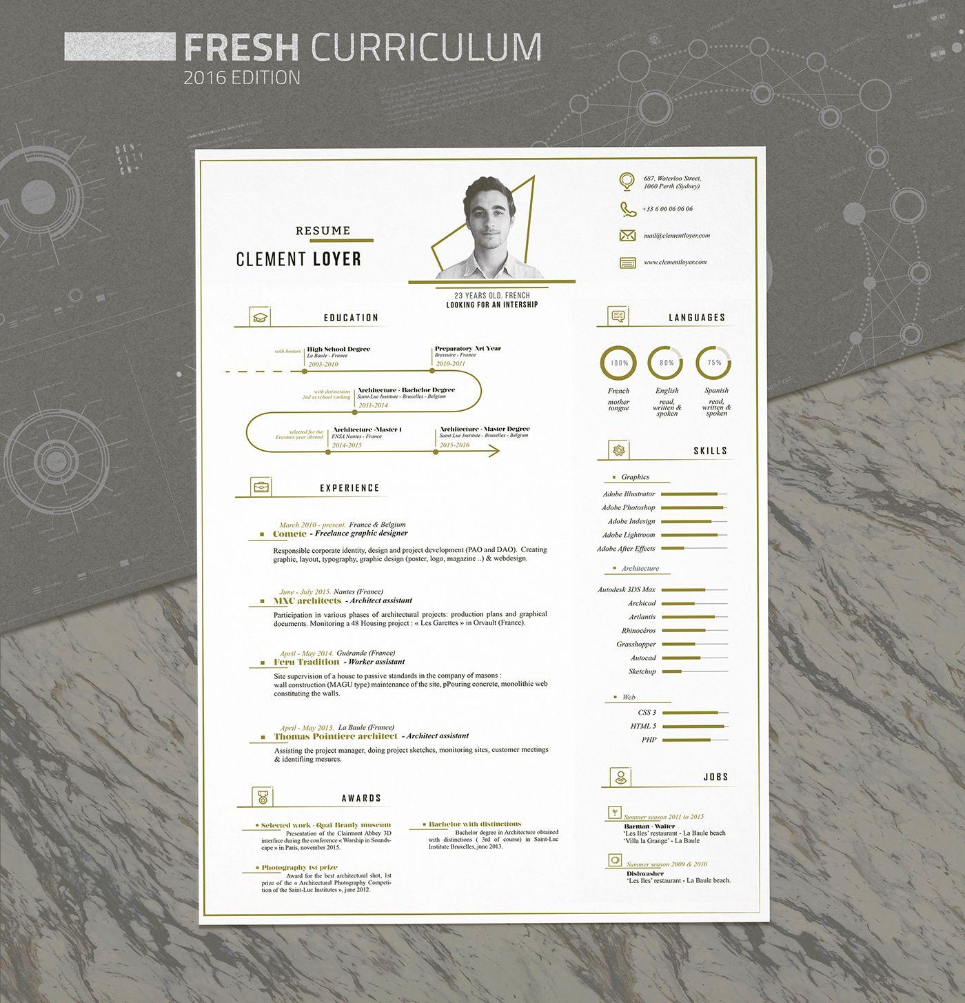 Free Fresh Resume Template  Office Guru  Paper Templates