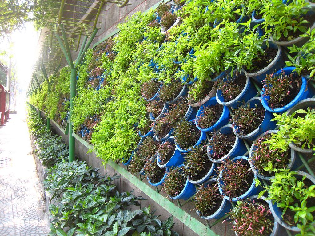 Jardin Vertical Casero Jardines Verticales Caseros Aprende A Dise Arlos Y Mantenerlos Originales Ideas Jardines Verticales Caseros - Macetas