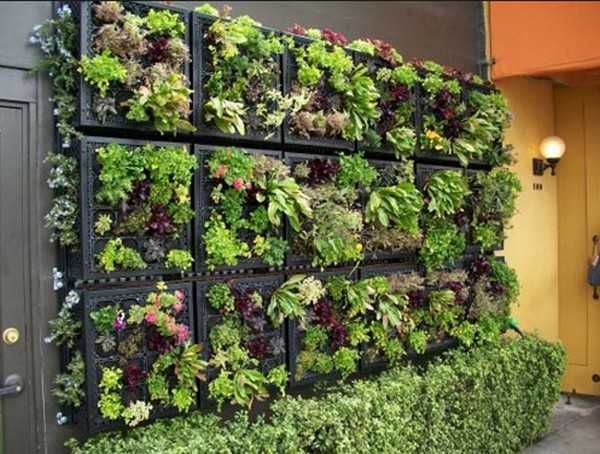 Milk Crate Vertical Garden Probably Durable And Lighter Weight Backing Could Be Plastic Board Vertical Garden Indoor Vertical Garden Vertical Garden Design