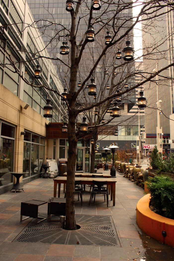 Lanterns In Trees At Nada Cincinnati Google Search Outside Pinterest Patio Lighting And Restaurant