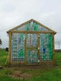 Plastic bottles become a greenhouse