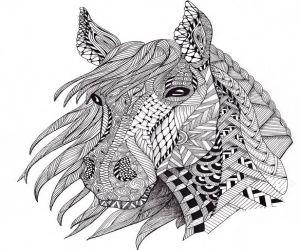 Ausmalbilder Erwachsene Pferde | Schloo | Pinterest