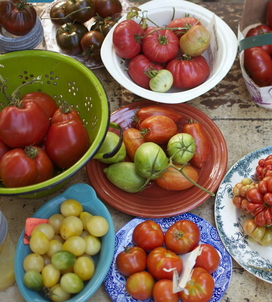 Eight Varieties Of Heirloom Tomato Seeds Each Type 400 x 300