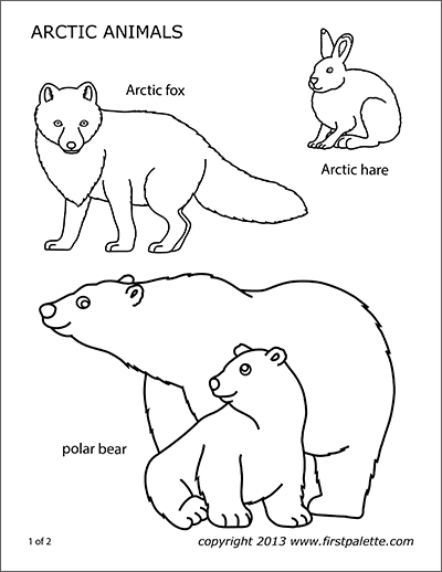 Animal Printables Free Printable Templates Coloring Pages Firstpalette Com In 2020 Polar Animals Arctic Animals Artic Animals