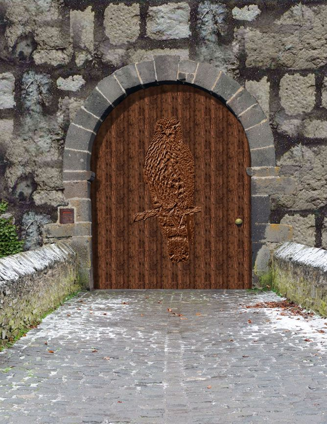 Old Castle Doors   About The Book & Old Castle Doors   About The Book   Doors n windows   Pinterest ...