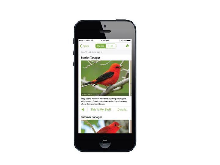 mise jour de notre s lection avec les applications all birds ecuador de sunbird images et. Black Bedroom Furniture Sets. Home Design Ideas