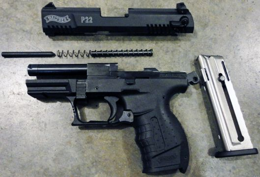 Smart and Frugal: The Walther P22 | P22 | Walther p22, Hand