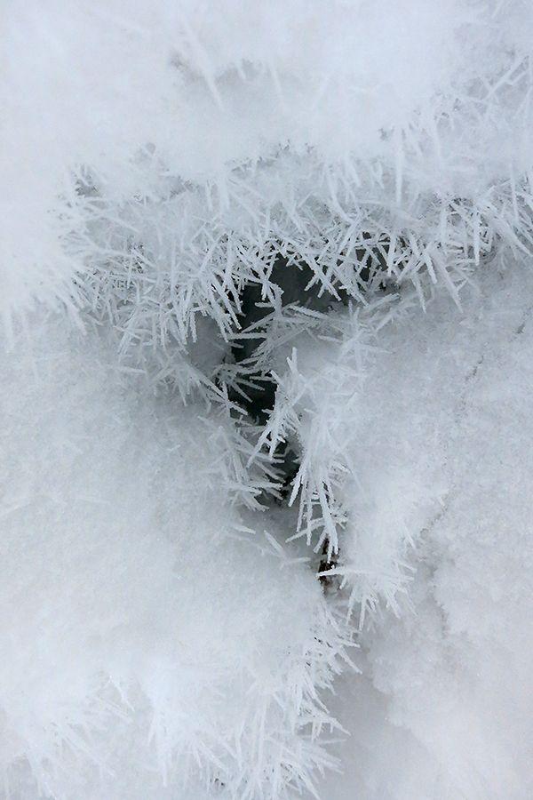 Seitakuvia: snow