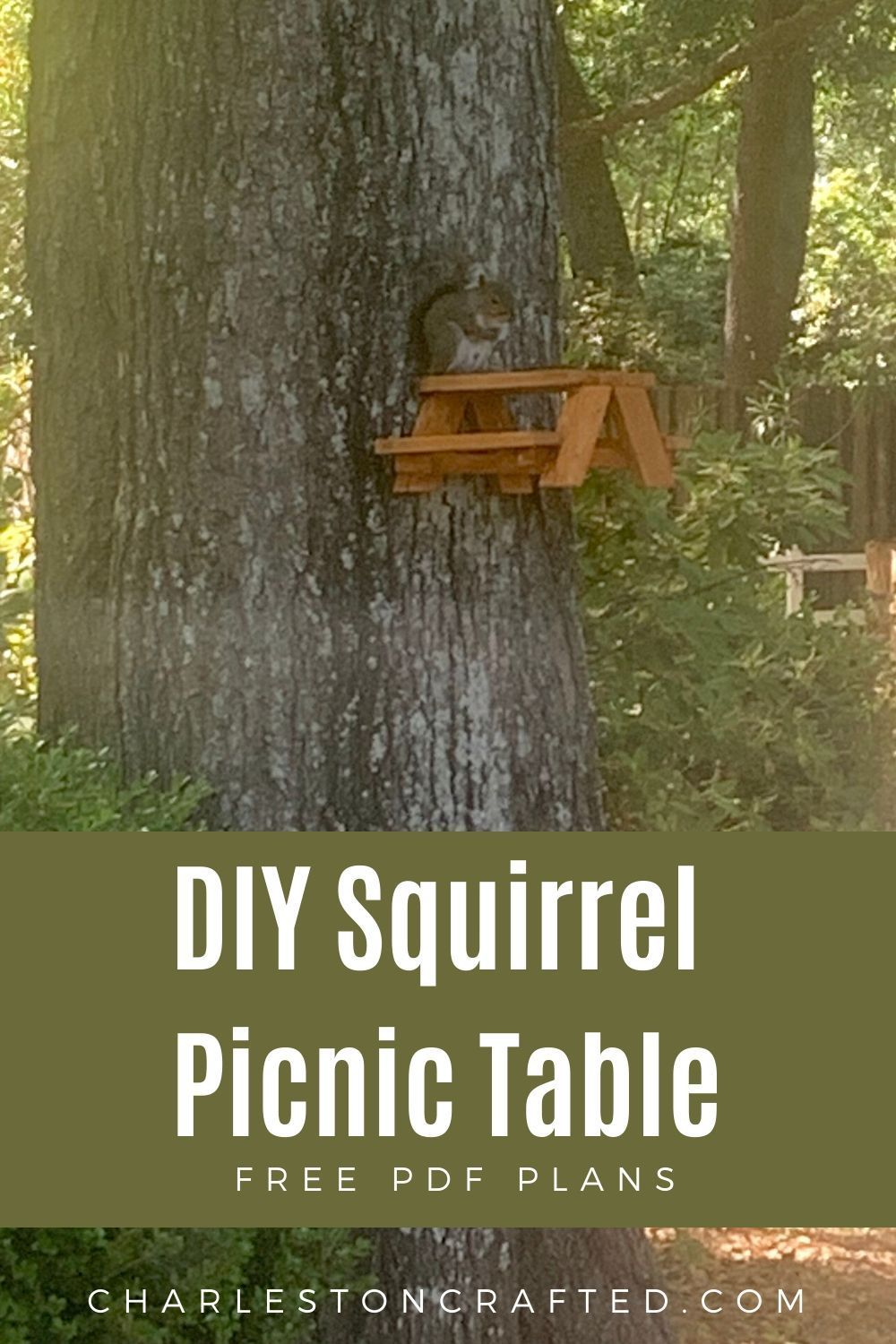 How To Make A Squirrel Picnic Table Free Pdf Plans Picnic