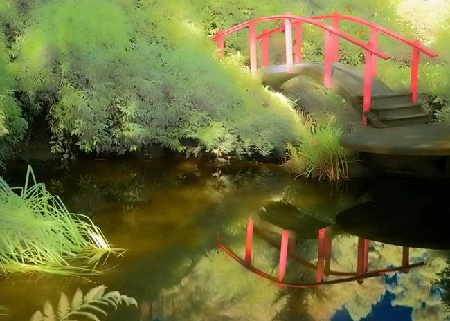 Heavenly Bridge Photograph At Betterphoto Com Zen Garden Covered Bridges Fish Pet