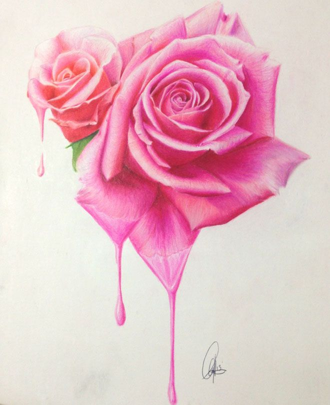 45 Beautiful Flower Drawings And Realistic Color Pencil Drawings Roses Drawing Beautiful Flower Drawings Flower Drawing