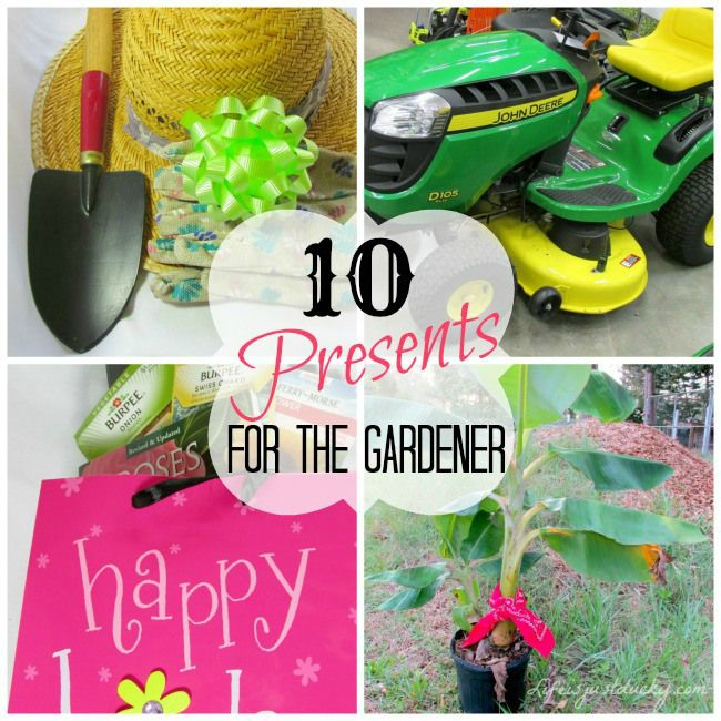 The 10 Best Gifts For Gardeners Whether It Mothers Day Fathers Birthday