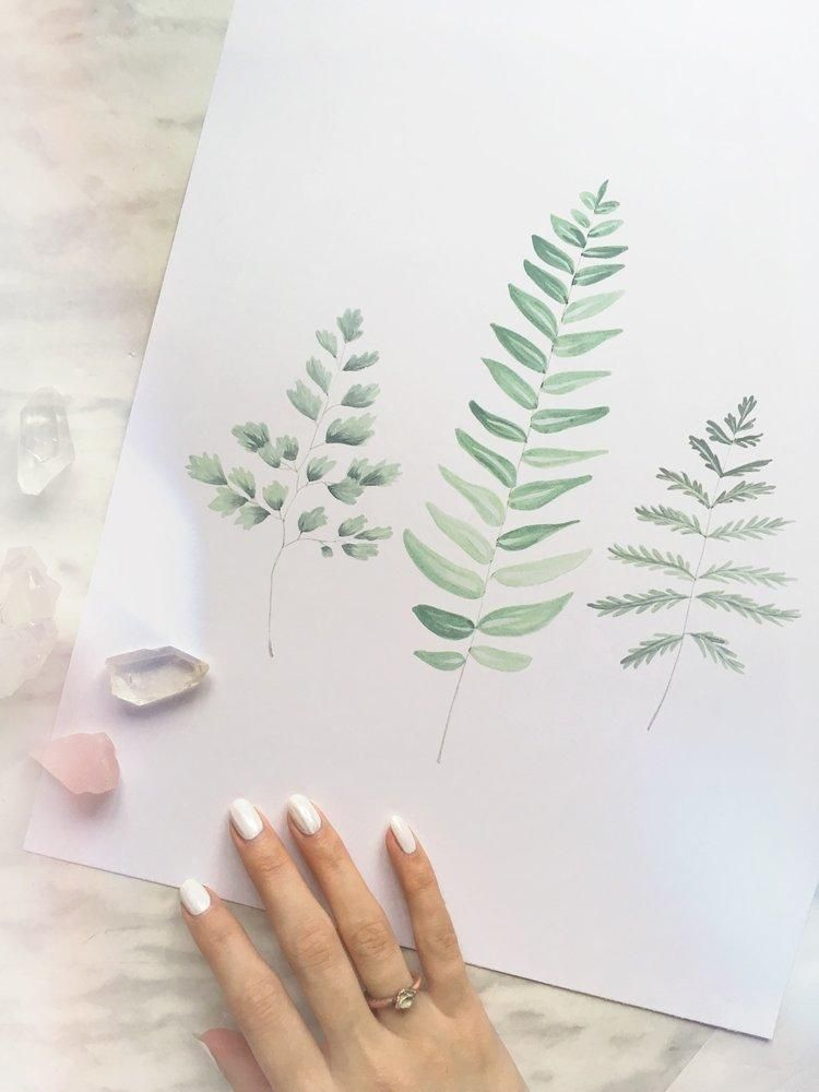 :: A professional reproduction of original botanical watercolor painting of ferns by Canadian artist Katelyn Morse. A gorgeous piece of art for any space! - Ready to be framed - Listing is for 8x10 size only, unframed- Shipped in protective sleeve with cardboard backing- Printed on high quality smooth finish 100lb cover paper Item ID: 7050