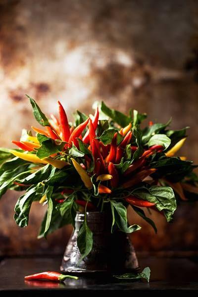 Bouquet Of Chili Peppers Je Pense A Mon Jardin Pinterest Chili