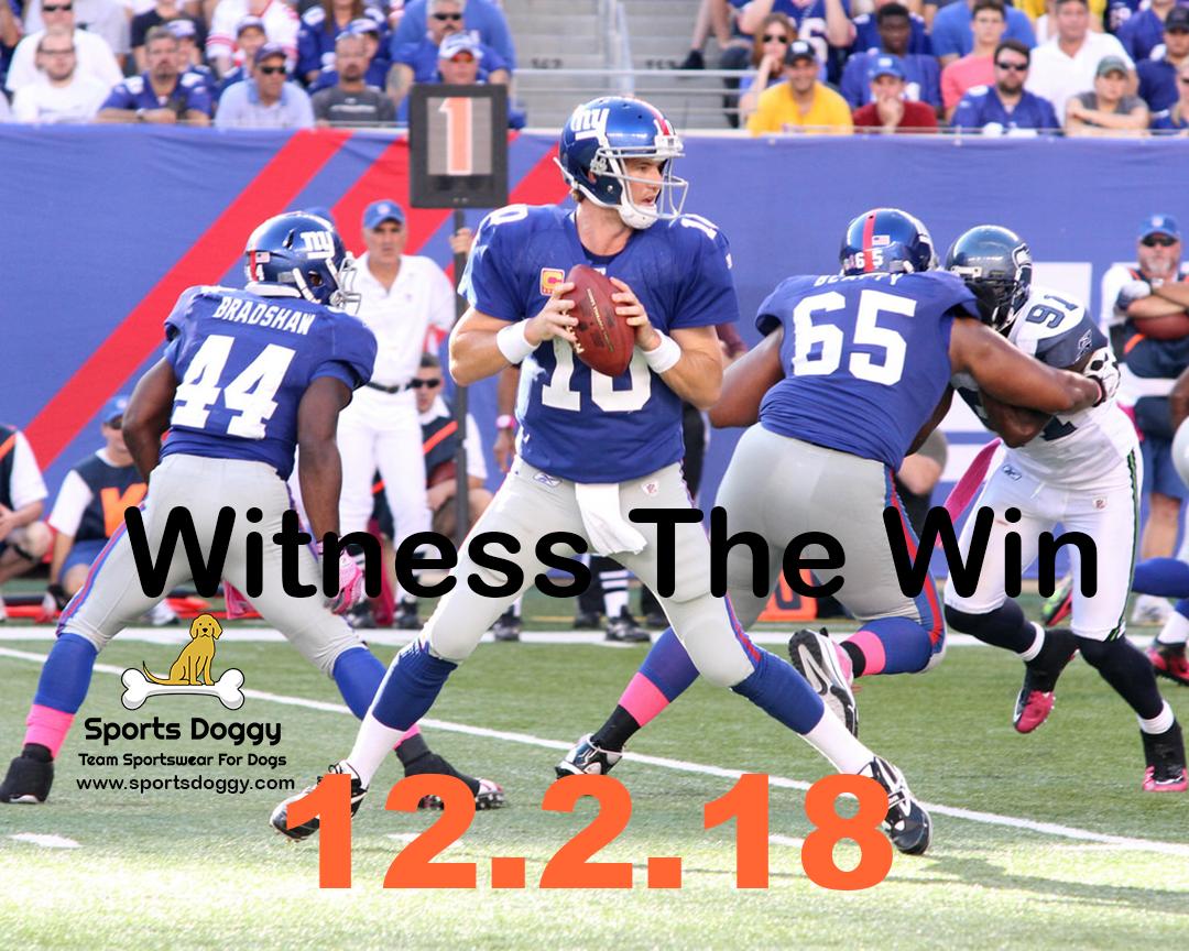 cheaper 39128 3e6cd 12.2.18 Witness The Win! #newyorkgiants #newyork #nfl ...