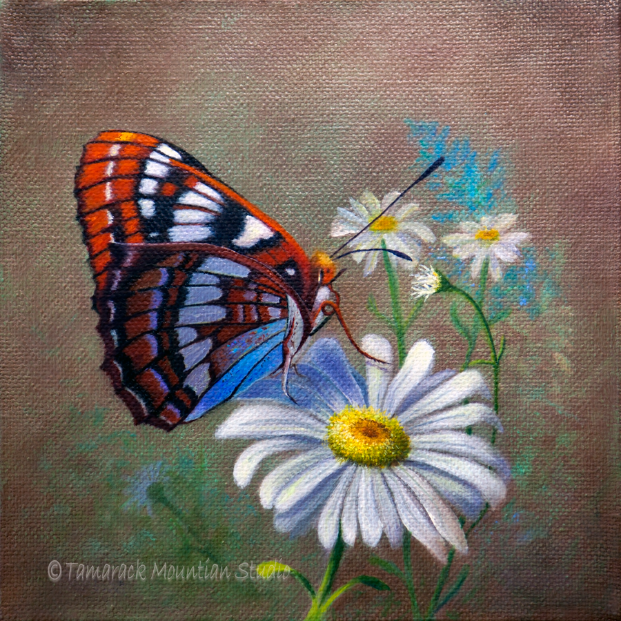 37++ Butterfly art and craft studio ideas