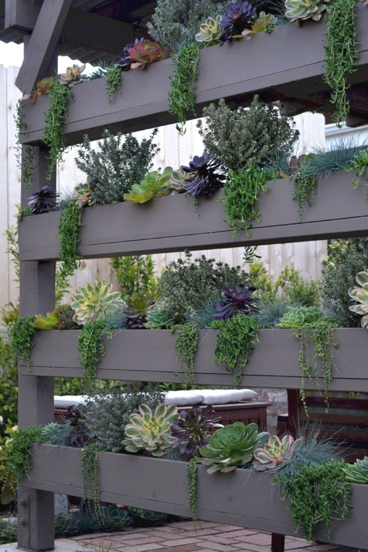 In this image the vertical pallet garden acts as a room divider