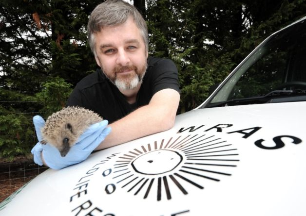 The East Sussex Wildlife Rescue And Ambulance Service Are Set To