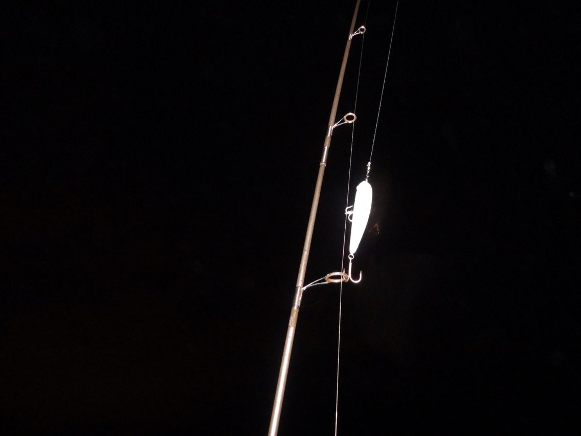 Fishing At Night Spinning Lure