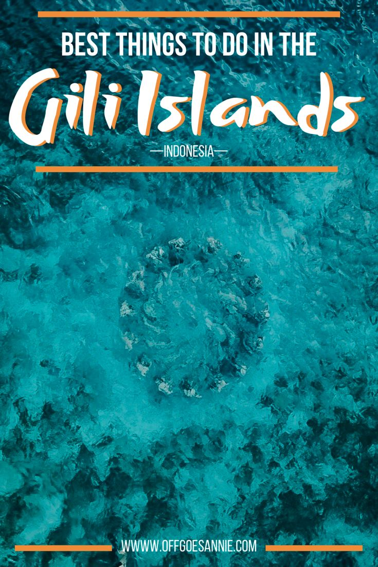 Everything you need to know about the best things to do on the Gili Islands off Bali, Indonesia. Including best places to stay and how to find the underwater statues!