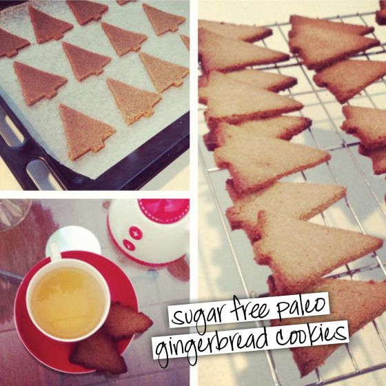 The perfect tea-compliment… Paleo ginger bread!