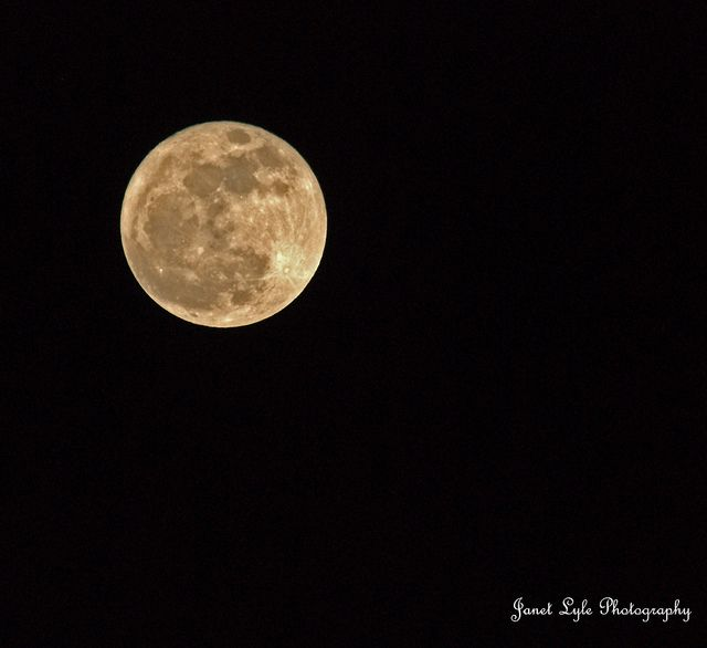 Clear Night by Janet Lyle  www.flickr.com/photos/vtsoutherngal