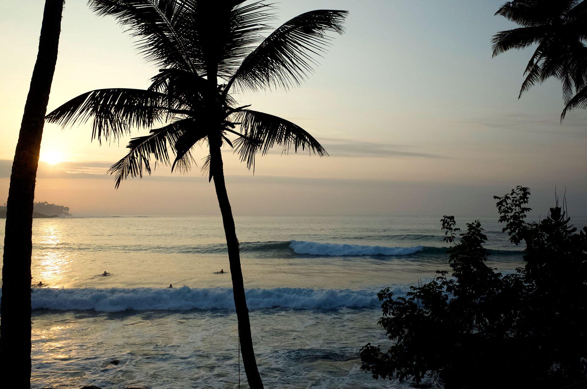 http://ohdawn.dk/   Ceylon