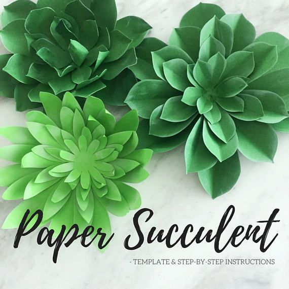48++ Paper succulent template free inspirations