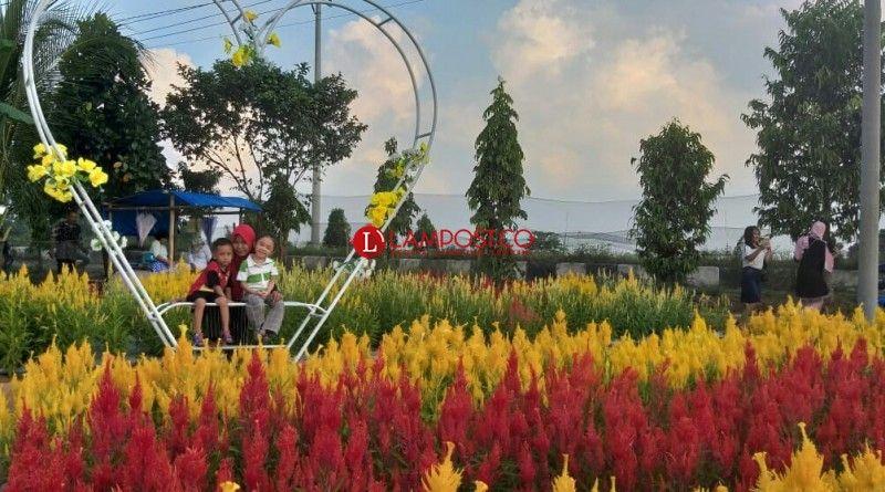 Foto Taman Yg Unik Buat Sekolahan Sd / Kebun Bunga | Bunga ...