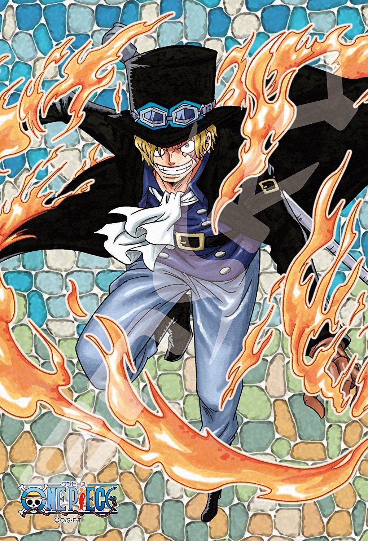 Pin By Citlalli Ortega On Anime Sabo One Piece Cute Anime Guys Anime