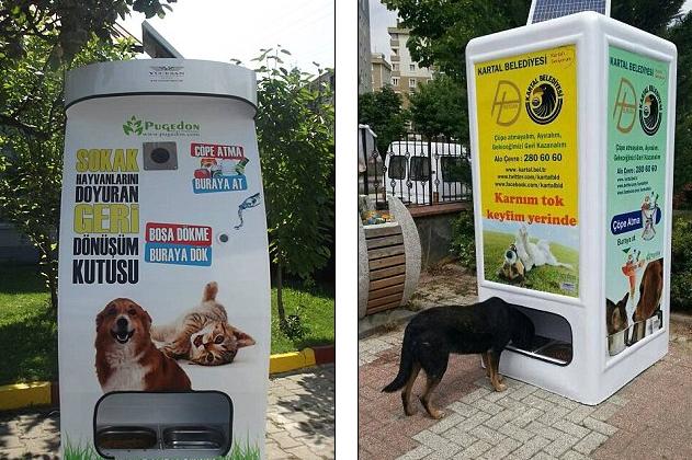 Máquina alimenta animais de rua em troca de garrafas pet