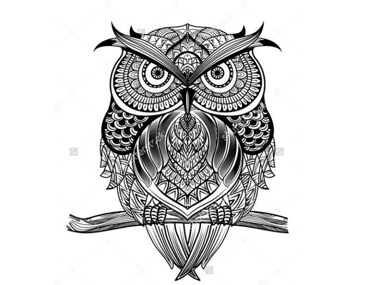 ما هو فن الزنتانجل Zentangle فن الزنتانجل هو عبارة عن نوع من أنواع الرسوم الزخرفية لكنه يختلف عن فن الماندالا فى كونه ليس بالضر Mandala Art Art Zentangle