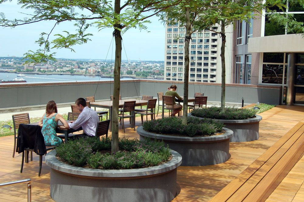 Large trees in planters offer shade at the international for Terrace garden concept