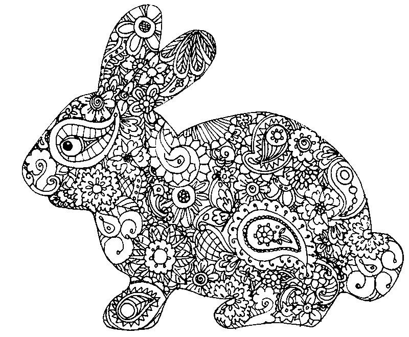 Easter Bunny Coloring Page for Adults Adult Coloring