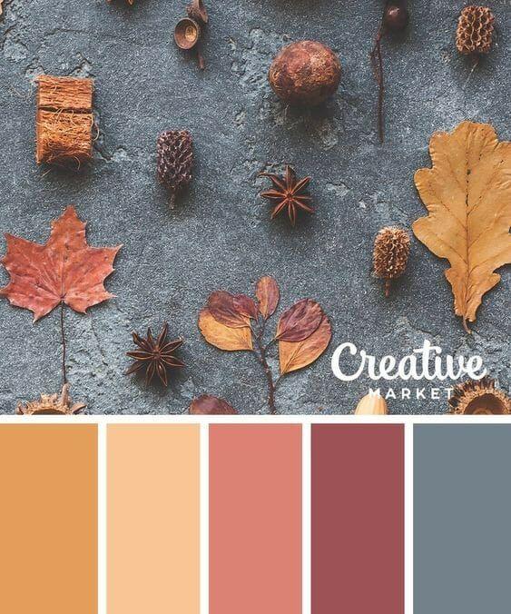 Ten Fall Color Combinations - County Road 407