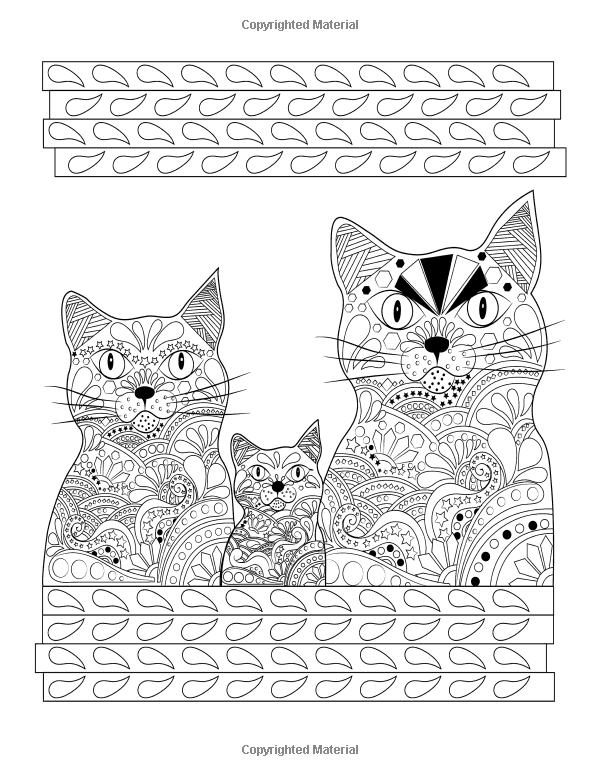 Amazon Creative Fancy Cats CatsColoring Book