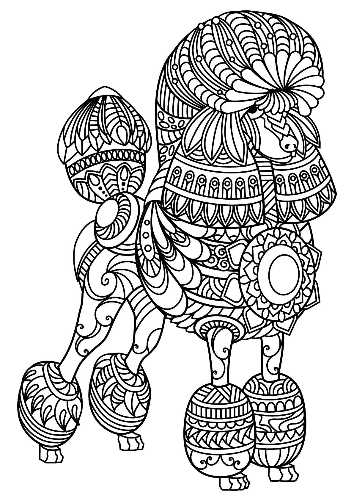 Pin On Adult Coloring [ 1684 x 1191 Pixel ]