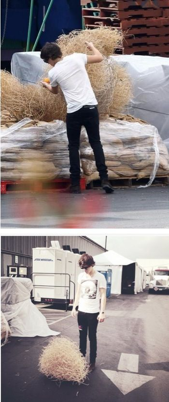 haha, Harry plans his Instagram pictures