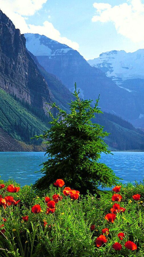Beautiful Landscape Beautiful Landscapes Beautiful Nature Nature Photography