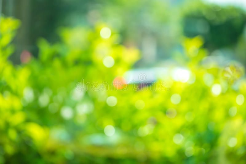 Beautiful Abstract Natural Spring Green Bokeh Background Blur E Ffect For Wind Sponsored Spring Green Na Bokeh Background Spring Nature Spring Green
