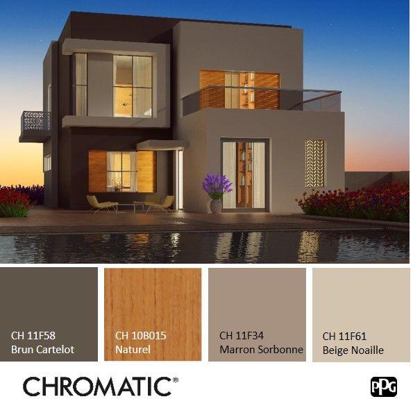 palette de couleurs naturelles en