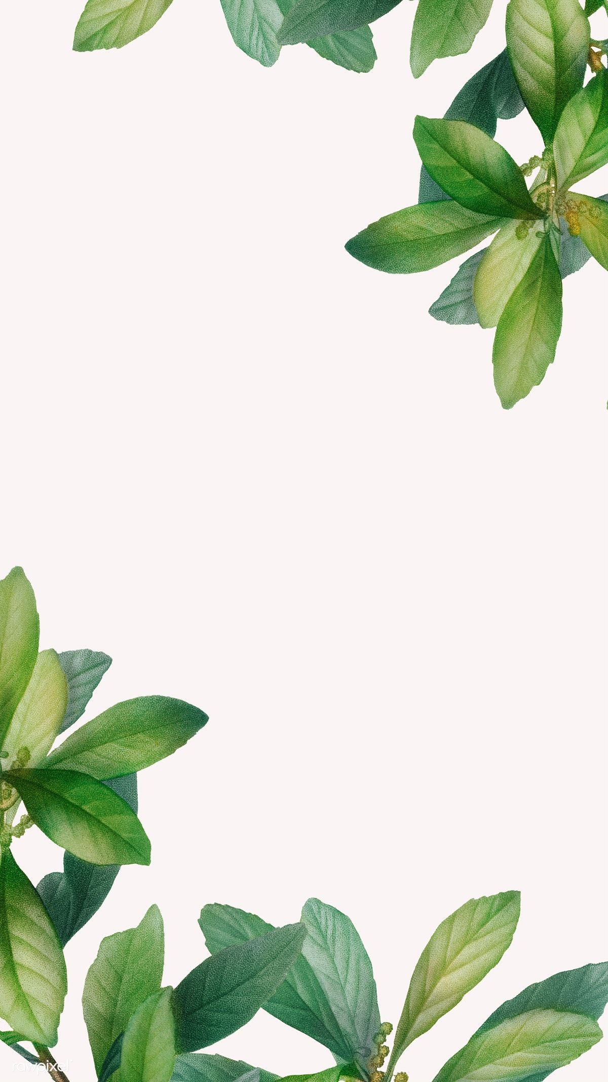 Download premium illustration of Tropical botanical leaves background