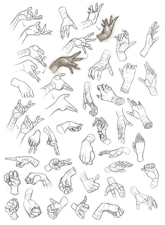 drawing art hands finger hand human Anatomy digital fingers ...