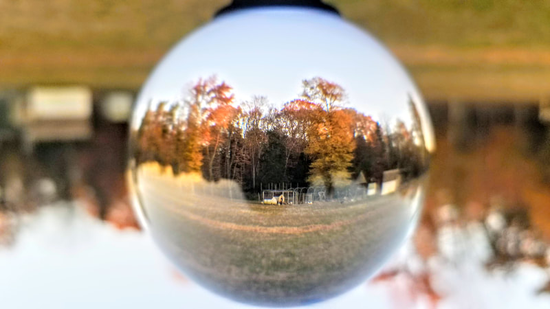 Mid Fall 2020 Tyrese Gould Jacinto Crystal Ball Christmas Bulbs Gourd Art