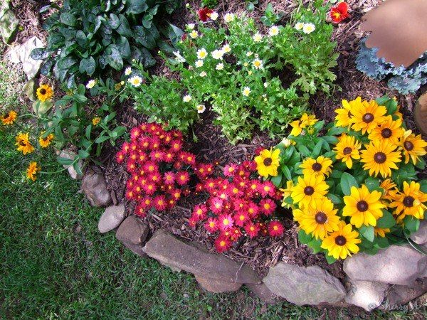 Small Flower Gardens lamppost flower bed | small flowers, google search and flower