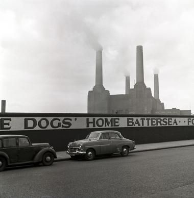 Battersea Dogs Home So That All The Animals Would Have A Permanent Home This Is The Most Amazing Dog And Battersea Power Station London Photos Vintage London